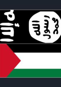 PLO-IS